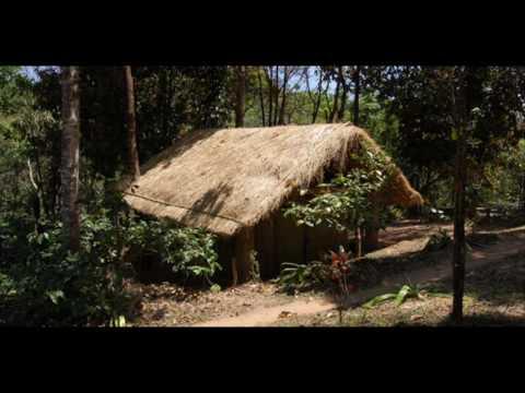 India Karnataka Madikeri Rainforest Retreat India Hotels India Travel Ecotourism Travel To Care