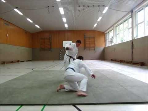 Judo Video 1 Techniken für den weiß-gelb Gurt