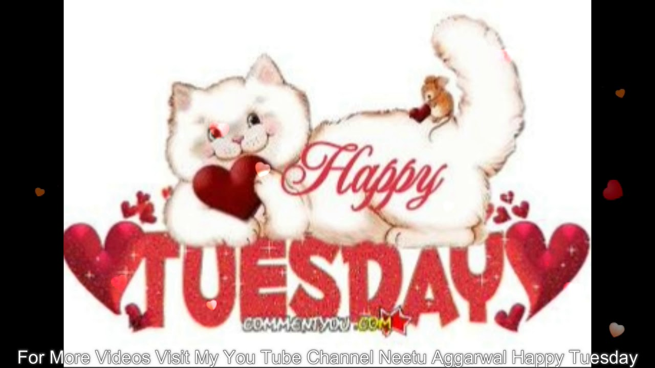 Happy Tuesday,Wishes,Greetings,Quotes,Sms,Saying,E-Card ... Happy Tuesday Wallpaper