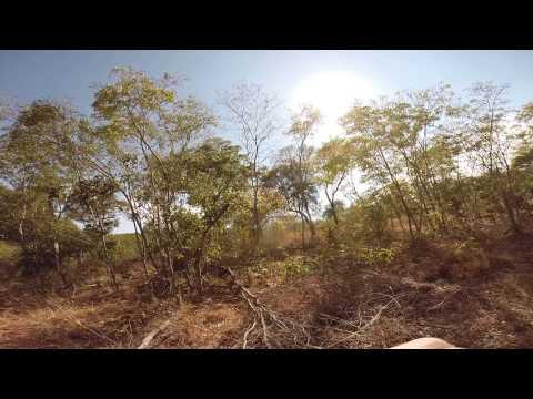 Zimbabwe Tuskless 2014 Zambezi Valley