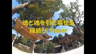http://www.tajima-monster-fukuoka.com/ 当店へご来店の皆様へ、サービ...