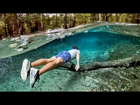 found-crystal-clear-blue-spring-caves-in-florida-(swimming-spot)