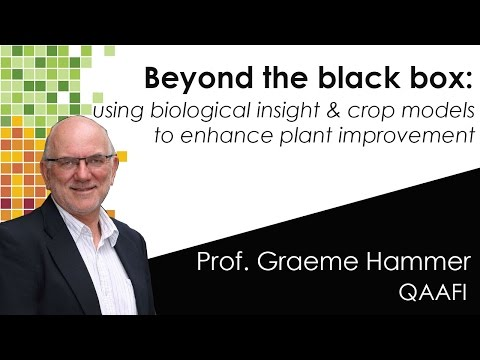 BEYOND THE BLACK BOX - using biological insight and crop models to enhance plant improvement