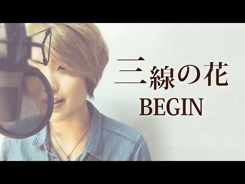 【028】三線の花/BEGIN (Full/歌詞付き) covered by SKYzART