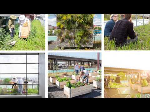 """NORBAN2015: """"Healthy city through density and greenery"""" by Oskar Norelius."""