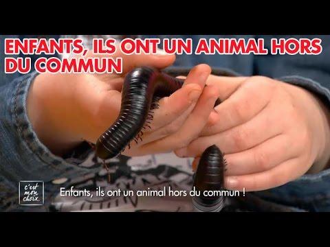 C'est mon choix : Enfants, ils ont un animal hors du commun !