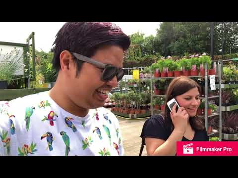 Plant Shopping: IKEA, B&Q, Wyvale Garden Centre
