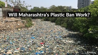 Why Plastic Bans Never Work