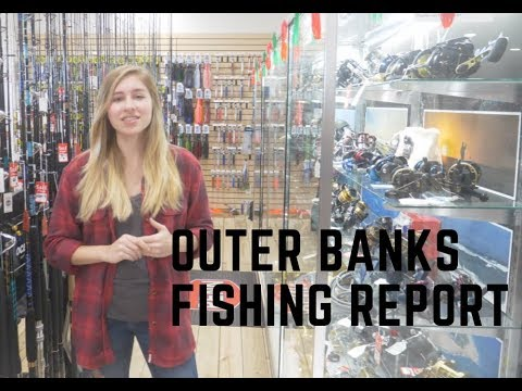 Outer Banks Fishing Report - Inshore And Offshore Fishing Report