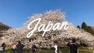 japan visit ・ mom's birthday
