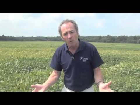 Wheat School - Three Key Steps to Planting Winter Wheat Right