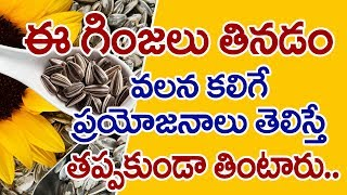 Health Benefits of Eating Sunflower Seeds Telugu I Why Eat Sunflower Seeds? I Good Health and More