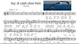 bay di canh chim bien Dm(nghe giai dieu)
