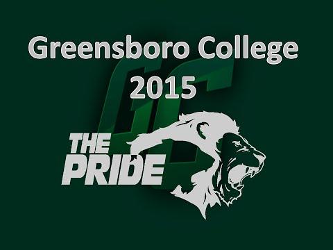 Game - Greensboro College vs Huntingdon College - 2015 USA South Tournament