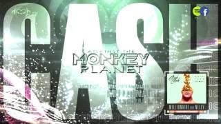 Cash Cash & Digital Farm Animals ft. Nelly - Millionaire (Original Mix)