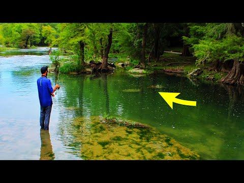 WE FOUND INSANE FISH In This HIDDEN RIVER SPOT!!