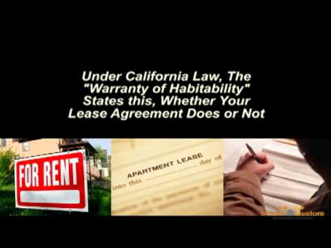 California Renter's Rights Mold, Water Damage, Leaks and Other Environmental Issues