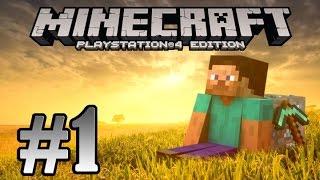 Minecraft (ITA) - Ep.1 - Iniziamo la nostra avventura! (HD)