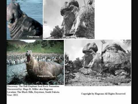 Hugeaux Photography: Geology: A New Discovery: The Bull Elephant Seal Rock Formation 2011.wmv