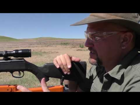 First Look: Savage Arms A22