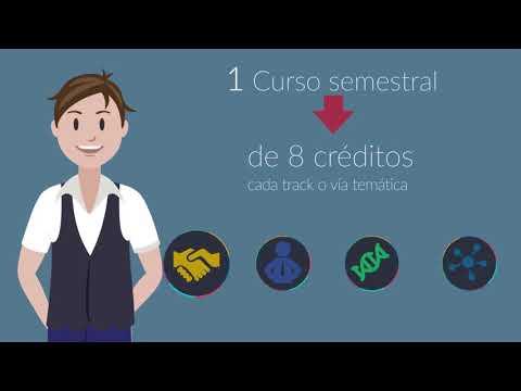 UDD Futuro- - Tutorial Nuevo Proyecto Educativo UDD 2018
