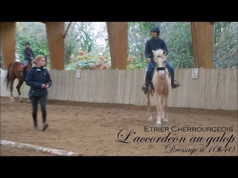 L'ACCORDEON AU GALOP - Dressage à 10h40 - Etrier Cherbourgeois - 동영상