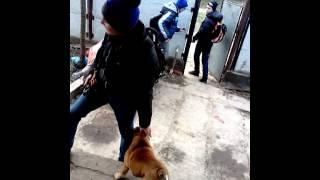 парень убегает от собаки)))