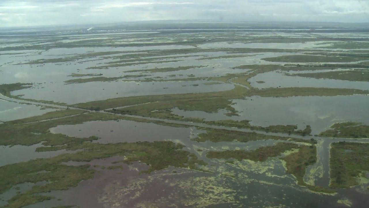 """The Lawbreaking is Ongoing"": Louisiana Levee Board Sues BP, Exxon, Shell, Chevron For Coast Damage"