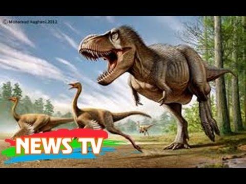 """""""Usain Bolt thời tiền sử"""": Kẻ khiến mọi khủng long khác phải """"hít khói"""""""