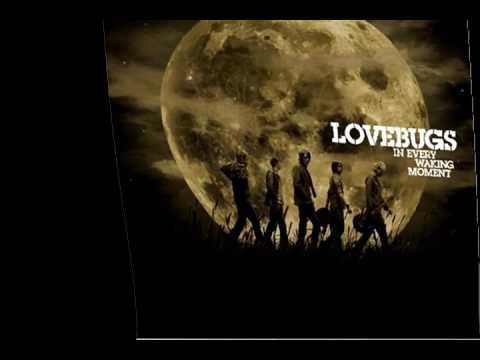 Lovebugs - Not Alone