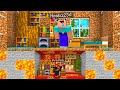 - I Built a TINY House Under Noob1234