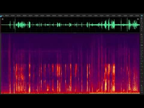 Creepy Alien / Demon / Garbled Sound on Mobile Cell Phone Call