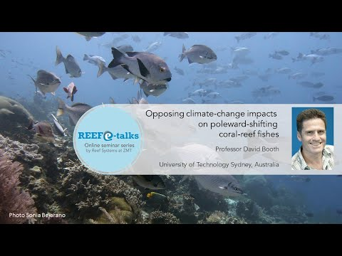 September 2020 Reef E-talk - Opposing Climate-change Impacts On Poleward-shifting Coral-reef Fishes