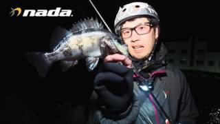 【nada.】淡路島メバルプラッキング完全攻略