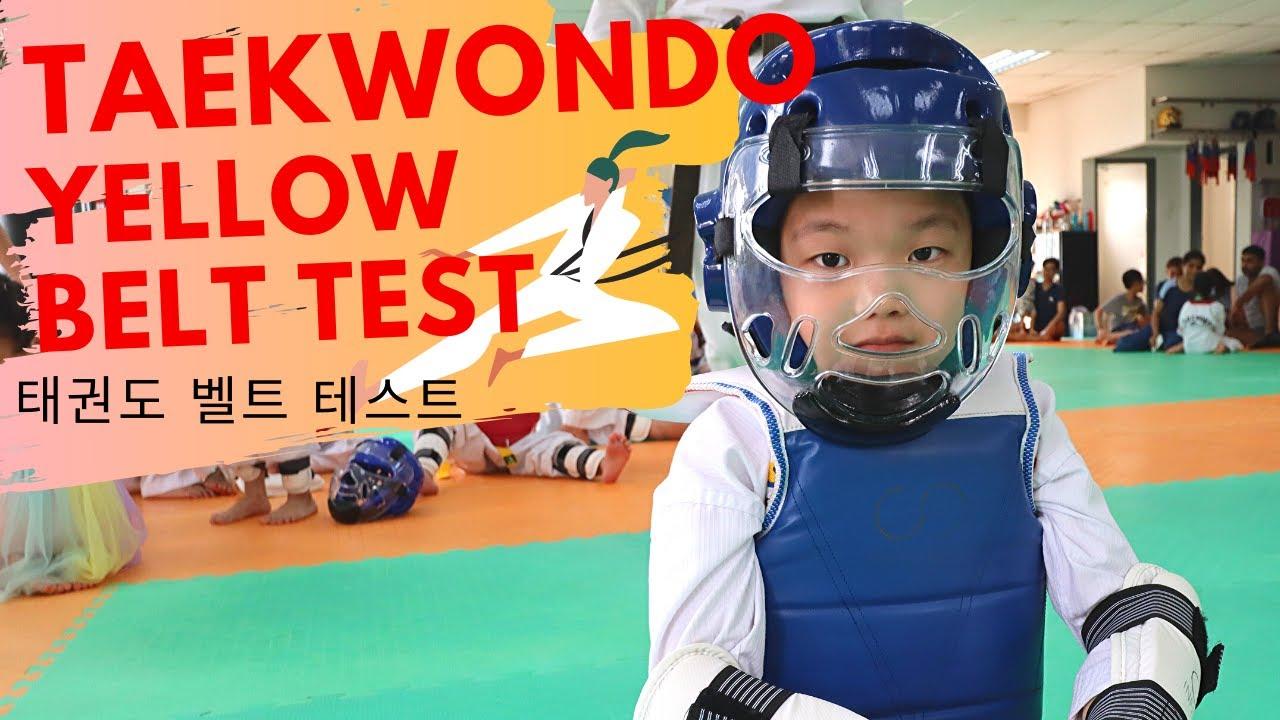 Taekwondo YELLOW Belt Test | I Break Board in Taekwondo test |태권도 벨트 테스트