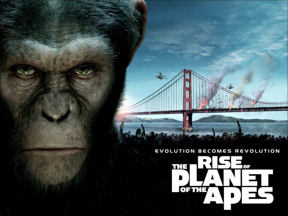 Planet Of Apes Rise