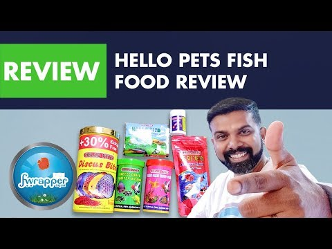 Hello Pets Fish Food Review