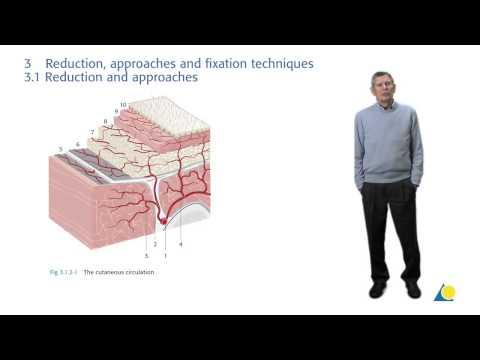 AO Principles Of Fracture Management -- Thomas Rüedi Interview