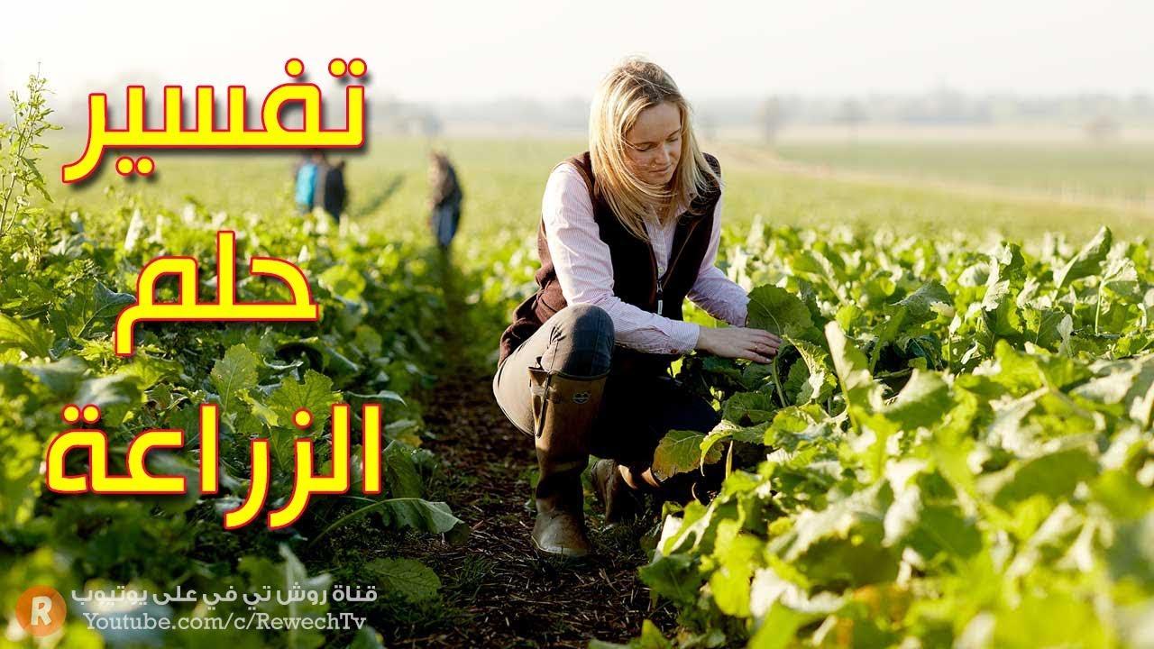 تفسير حلم الزراعة - ما معنى رؤية الزراعة في الحلم؟ - سلسلة تفسير الأحلام