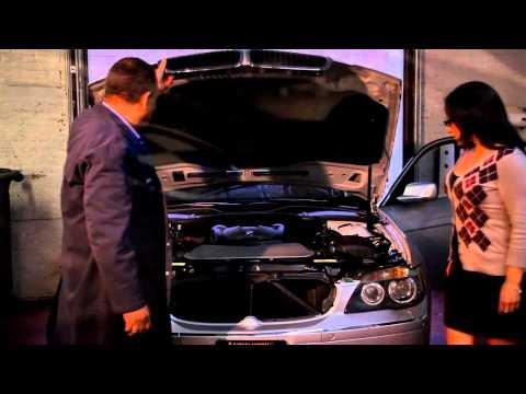 Bedford Park Motors European Auto Repair & Service Shop New York