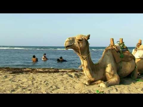 Bereket Mengisteab  - Milena / ሚሌና -  New Eritrean Music Video 2017 (Official Music Video)