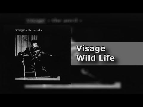 Visage - Wild Life - The Anvil (8/9) [HQ]