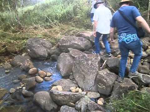 Agence de Francaise de Developpment Visit at Bagalangit, Manolo Fortich Bukidnon