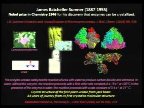 Cristallografia@100 - PROSIT!: Alla scoperta dei segreti della materia