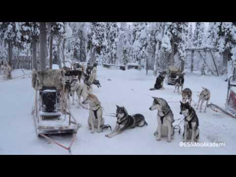 @ESNAboAkademi GOES LEVI, Lapland