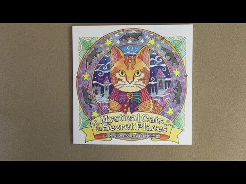 Mystical Cats In Secret Places A Cat Lovers Coloring Book Flip Through
