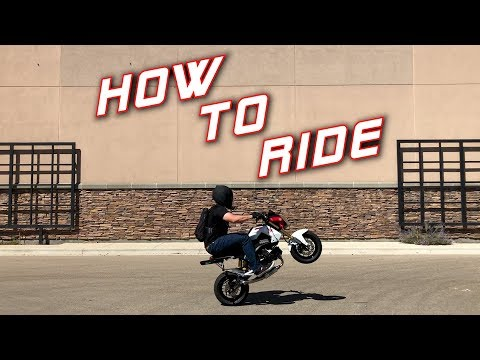 How to Ride a Honda Grom | Beginners Guide