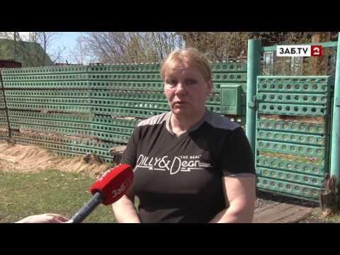 Спецрепортаж: под мэром Могочи Красновым шатается кресло