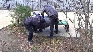 Задержание наркодиллеров в Ялте 22 ноября 2017