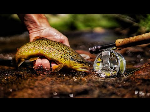 THE ESCAPE: A FLY FISHING FILM (Part 1)